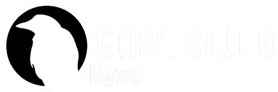 Logo Corvostudio News